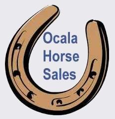 Horse Shoe